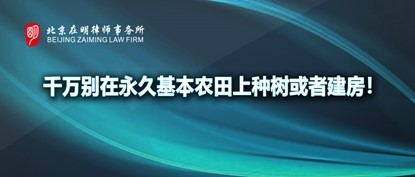 qy_editorplus/jR/202103/yh_7_eb87de06bba6f435237f91effd5ca35a.jpg